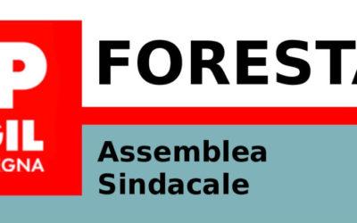 Convocazione Assemblee Sindacali FORESTAS